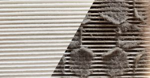 IMPORTANCE OF AIR FILTER CLEAN