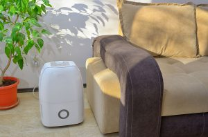 Air Purifiers with Dehumidifiers