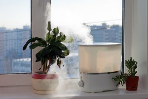Find a Low Cost Air Purifier