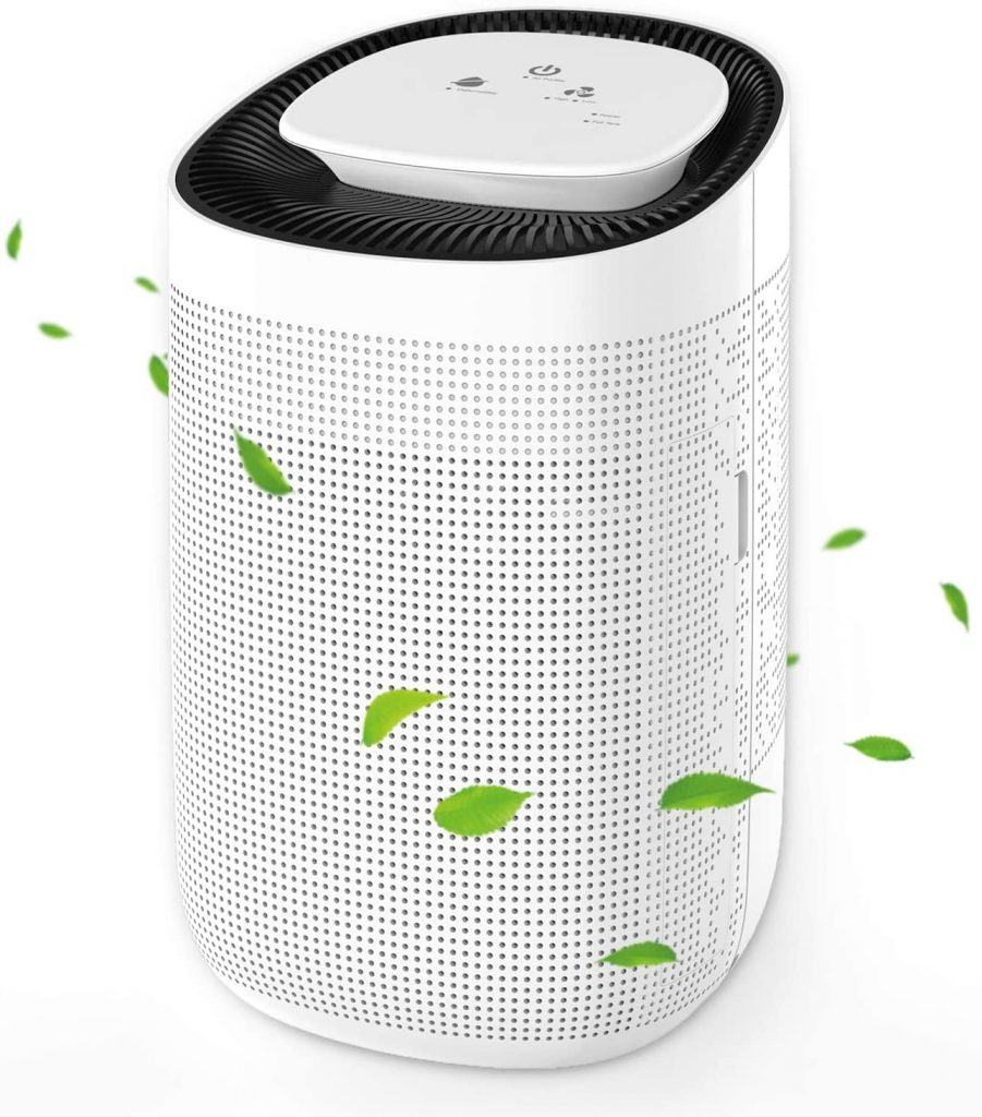 Top Five Affordable Air Purifier Dehumidifier Combination Units | What is the Best Air Purifier I Can Buy? 2
